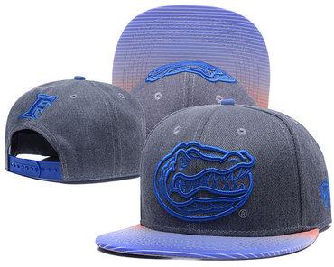 Florida Gators Team Logo Gray Ajustable Hat GS