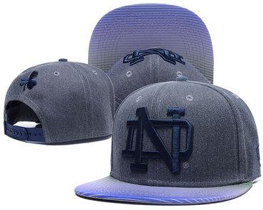 Notre Dame Fighting Irish Team Logo Gray Ajustable Hat GS